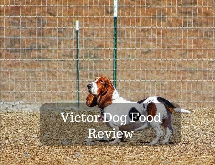 Victor Dog Food Types